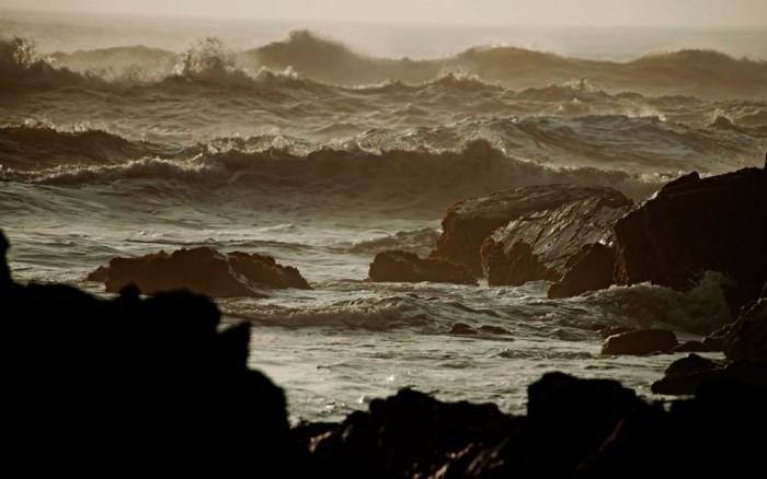 """Perú Natural:  Ciclo de charlas """"Mar peruano al 2021"""" /  / Joinnus"""