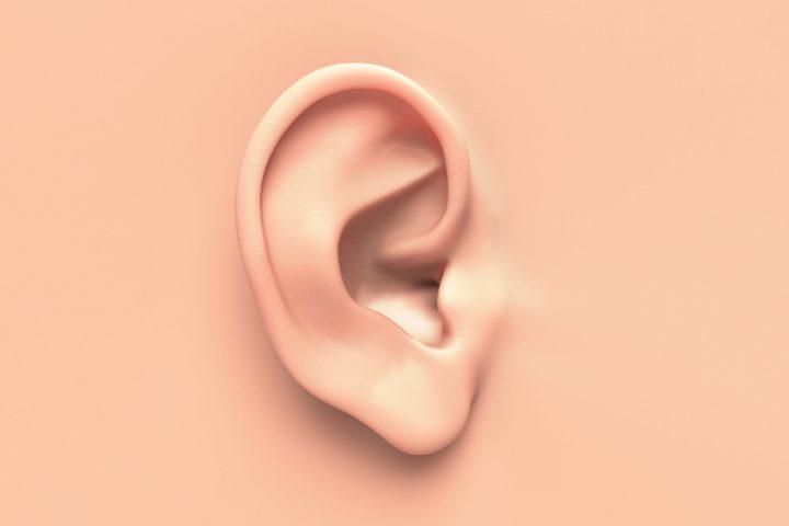 I can't hear a damn thing