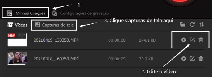 Como Gravar vídeo com Zoom sem Permissão - Passo 6