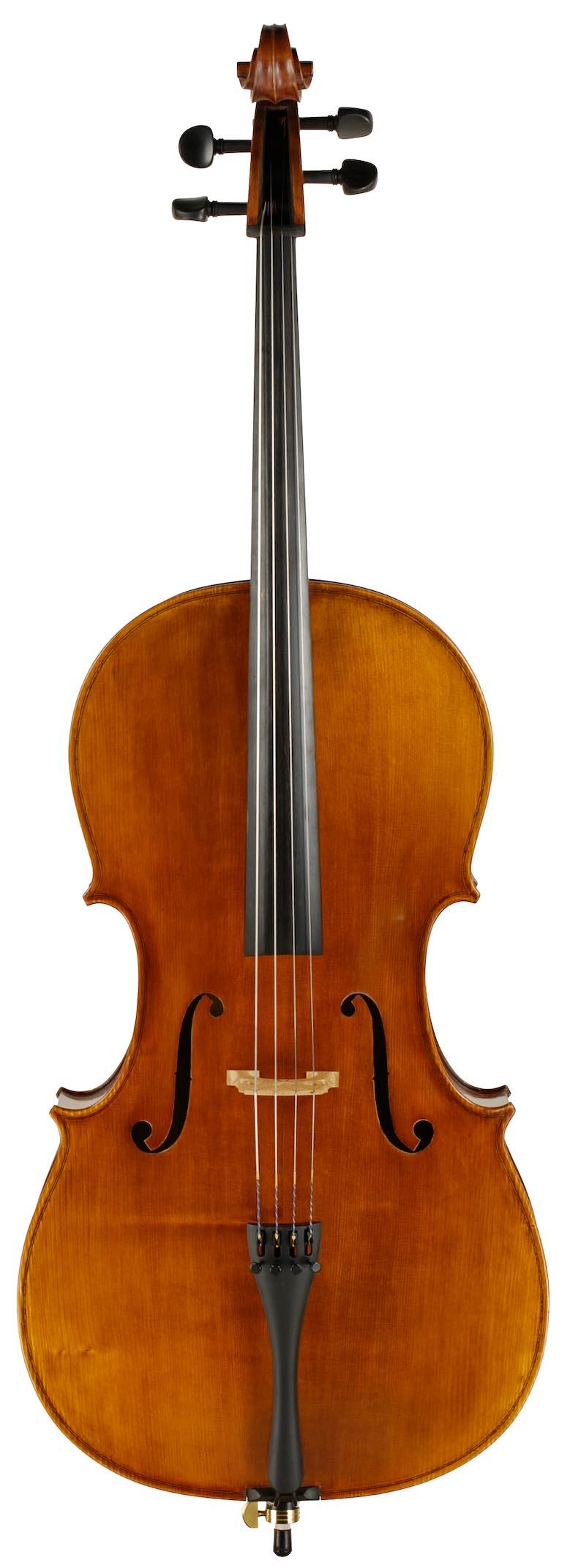 Hybrid Cello Rental Top