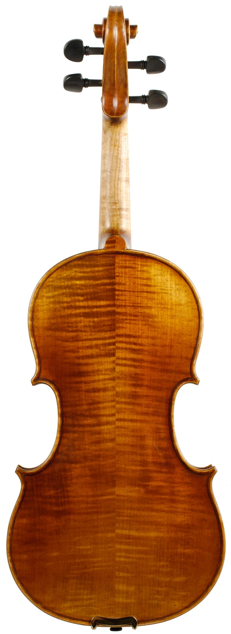 Upper Level Violin Back
