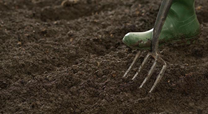 preparing the soil for planting change