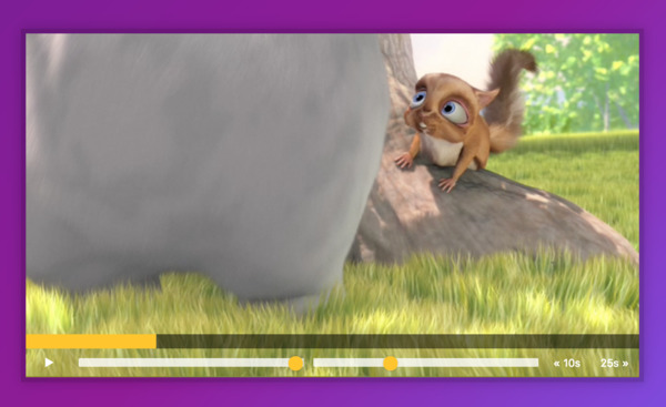 Custom HTML5 Video Player