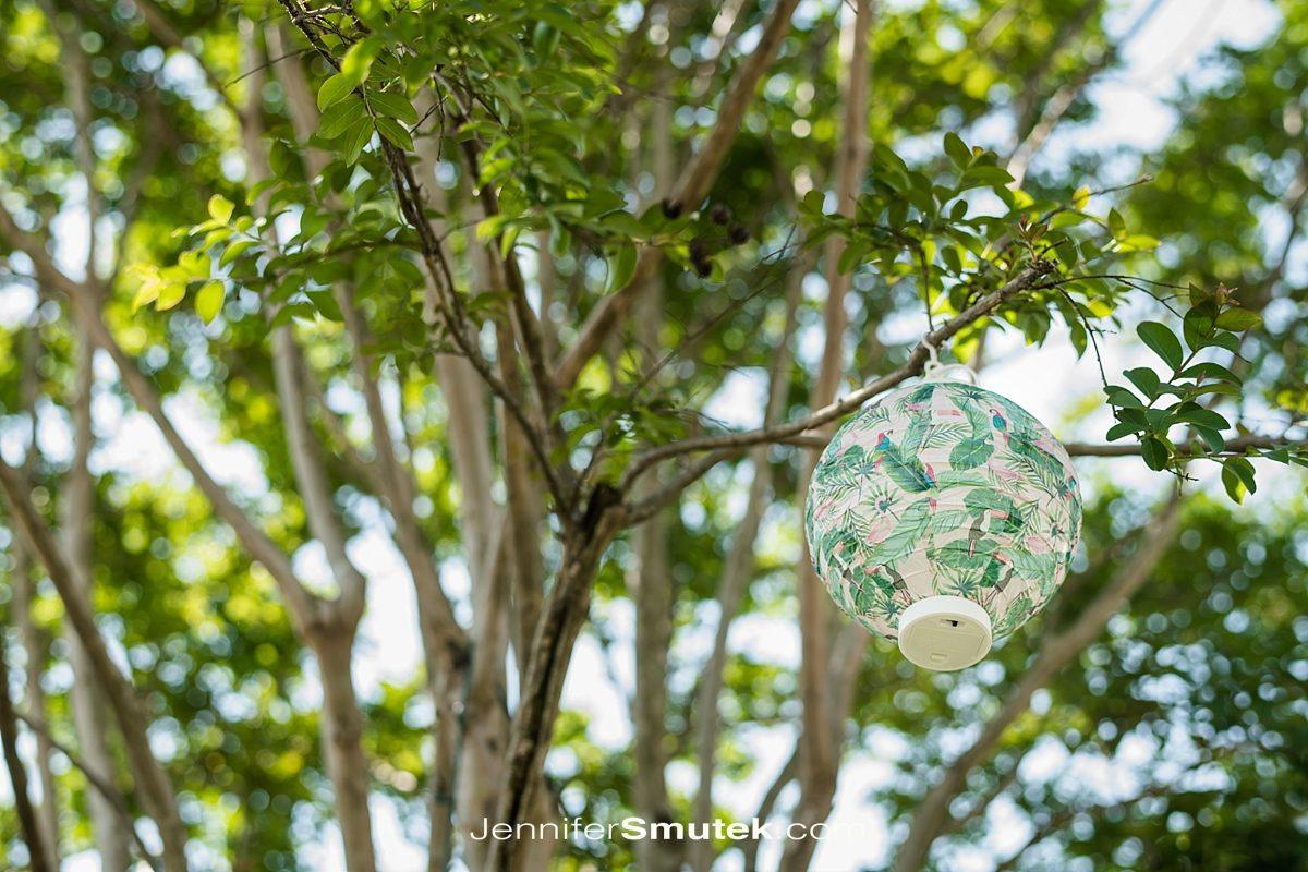 lantern in tree