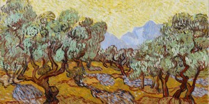 Vincent_van_Gogh_-_Olive_Trees_-_Google_Art_Project_(Minneapolis_Institute_of_Arts)