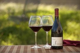 Premium Pinot Noir Wines