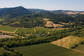Russian River Valley Aerial View.