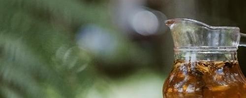 Spring Nettles Tea Recipe