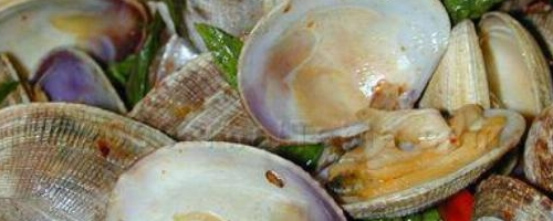 Spicy Clams with Basil Recipe