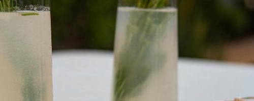 Rosemary Lychee Cocktail