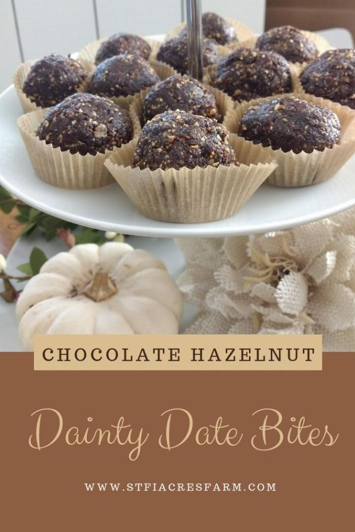 Dainty Date Bites
