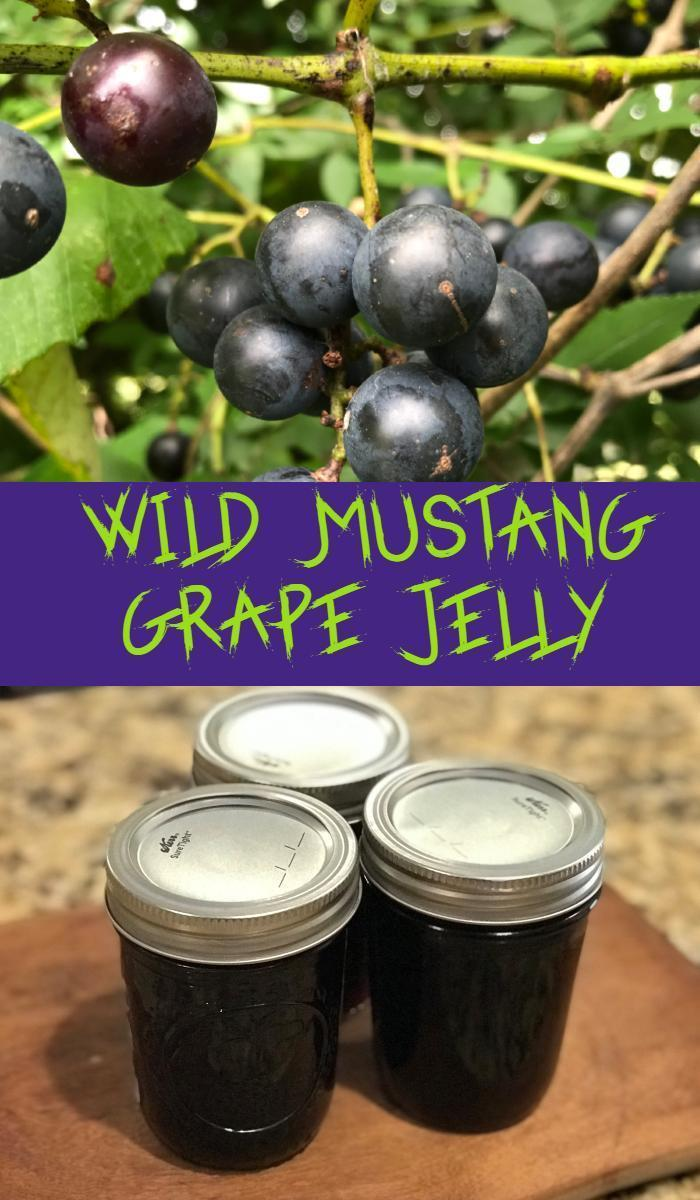 Wild Mustang Grape Jelly
