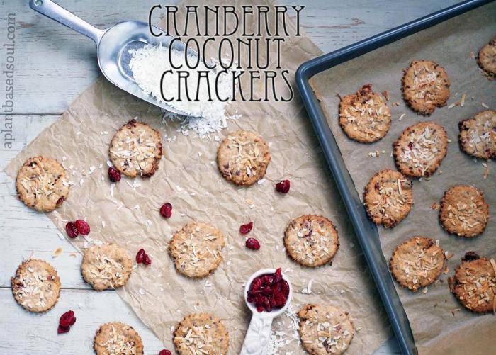 Cranberry Coconut Crackers
