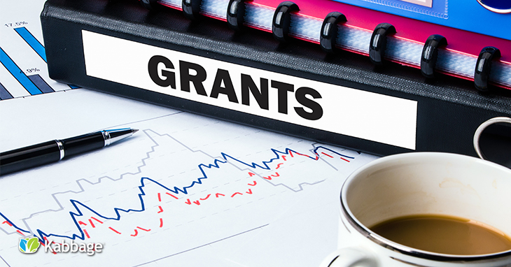 Small Business Grants: The Pros and Cons | Kabbage