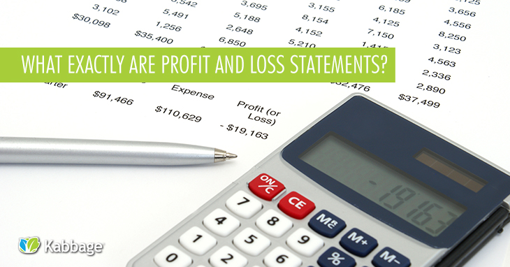 what exactly are profit and loss statements