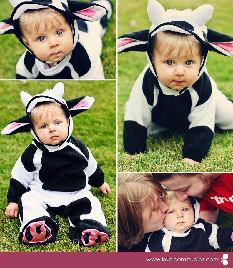 col-e-cow