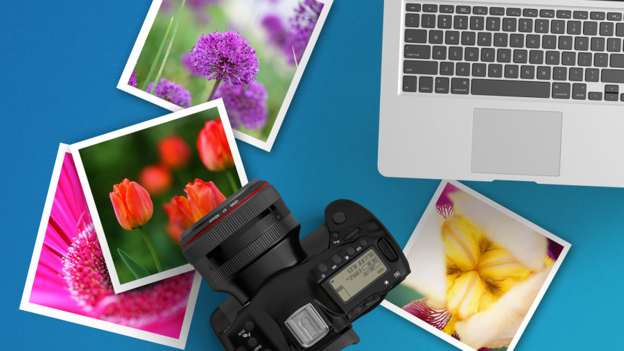 Beginning Photographers Crash Course