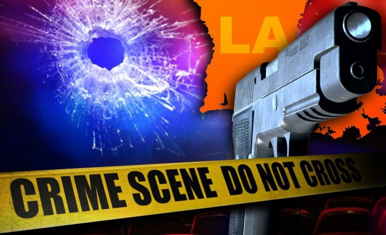 One Killed In Overnight Shooting On Lee Ave.