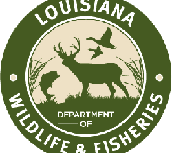 Free online training available for Louisiana trappers