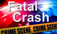 Unrestrained Passenger Killed; Driver Arrested in Evangeline Parish Crash