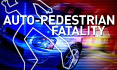 Pedestrian Killed in Iberia Parish Crash