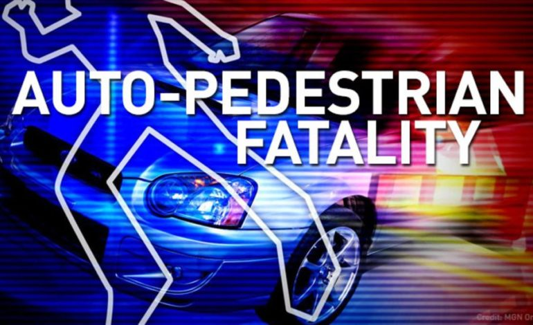 Pedestrian killed on US 190