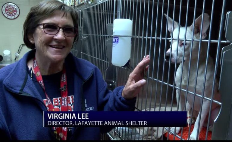 Director of Lafayette Animal Shelter Retires