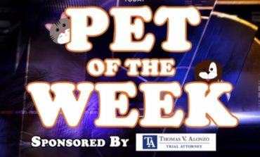News15 Today's Pet Of The Week For June 3rd