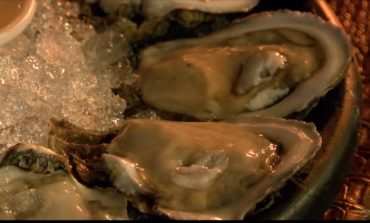 Risks of eating raw oysters