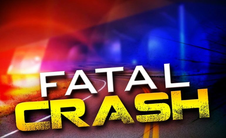 Driver and child passenger killed in single  vehicle crash