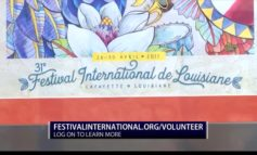 Festival International Volunteers