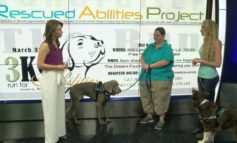 Focus at Noon goes to the dogs: Service dogs, Essen and Jaeger, show what it means to be mans best friend