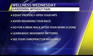 Wellness Wednesday: Gardening without pain