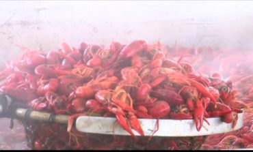 The 2018 Breaux Bridge Crawfish Festival Is Underway