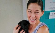 Acadiana Animal Aid welcomes new Executive Director