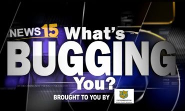 What's Bugging You!? No Recycling at Apartments