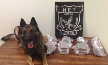 Friday the 13th traffic stop leads to seizure of $45k in marijuana