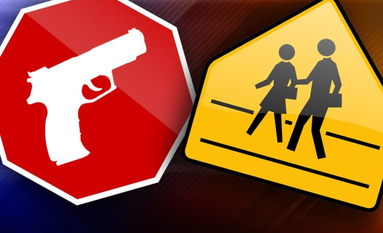 St. Martinville Juvenile Arrested For Bringing Firearm On School Campus