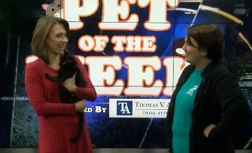 News15's Pets Of the Week: Michael Scott and Bambi