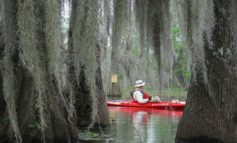 Jeanerette Museum Board asking for stories about Bayou Teche