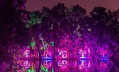New Orleans celebrates the 32nd anniversary of America's most dazzling holiday light festival