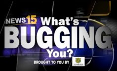 What's Bugging You!? People who throw trash out of their cars