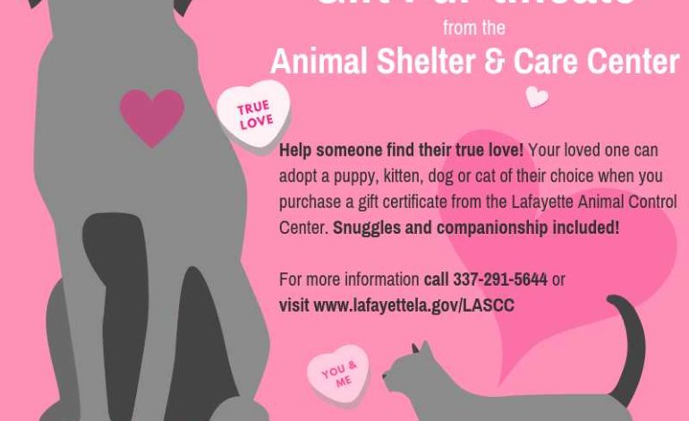 Gift a furry friend; Lafayette Animal Shelter offers Valentines Day gift certificates