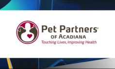 Pet Partners Of Acadiana: Service Animals