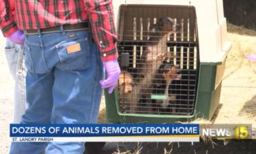 St. Landry Animal Control rescues dozens of animals from home