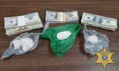 St. Mary Parish Sheriff's Office Arrest One for Meth and Counterfeit Money