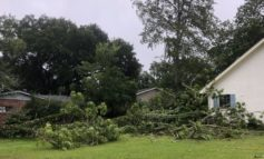 Iberia Parish: Debris removal generated by Hurricane Barry