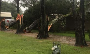 Viewer-Submitted Storm Damage Photos