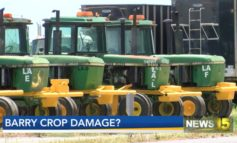 LSU AgCenter assesses local crops for damage after Barry