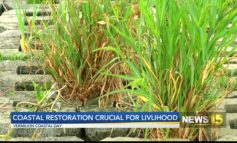 Coastal Restoration Crucial For Livelihood In Louisiana